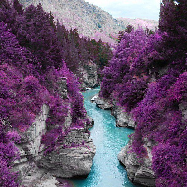 Скай (Шотландия) (600x600, 101Kb)