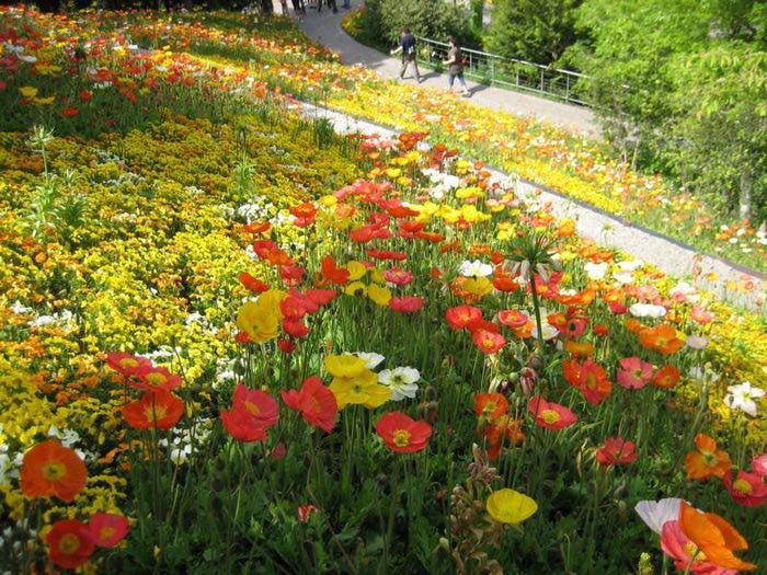 Сады замка Траутмансдорф 51722