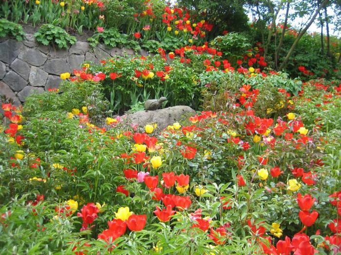 Сады замка Траутмансдорф 53910