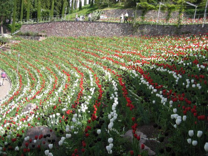 Сады замка Траутмансдорф 65328