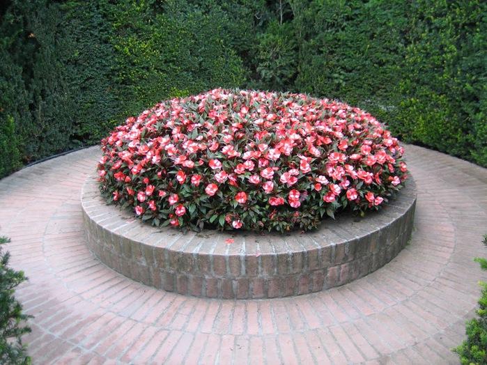 Сады замка Траутмансдорф 39744