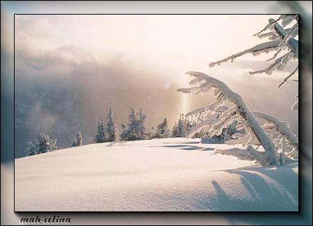 Зимний-пейзаж (450x325, 173Kb)