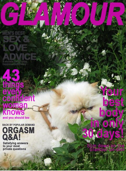glamour_magazine_1dniuaehq (480x650, 403Kb)