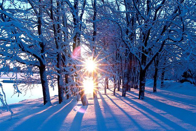 зима (640x427, 109Kb)