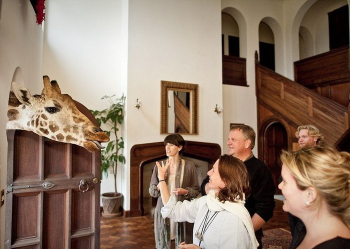 giraffe-manor-5 (700x498, 123Kb)