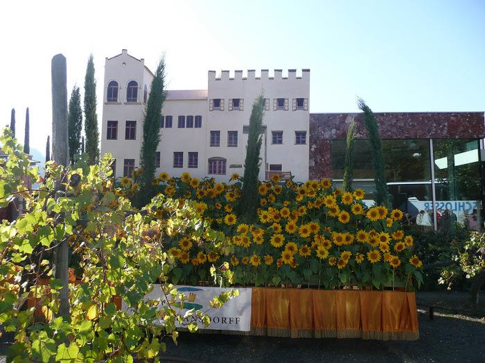 Сады замка Траутмансдорф 35968