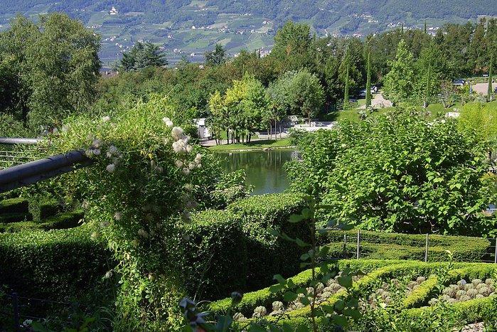 Сады замка Траутмансдорф 23509