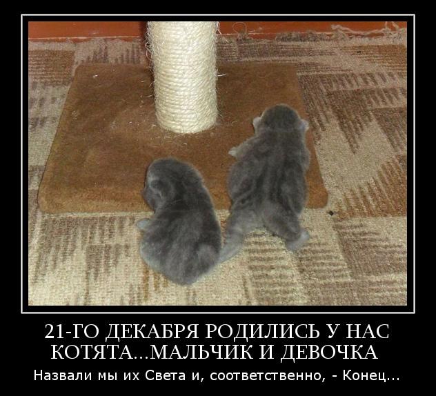 tuxpi.com.1357570161 (632x574, 175Kb)