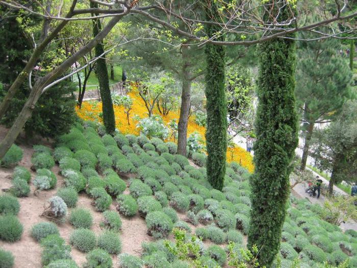Сады замка Траутмансдорф 38236