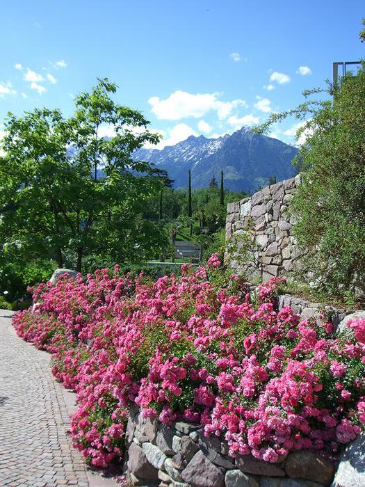 Сады замка Траутмансдорф 85446