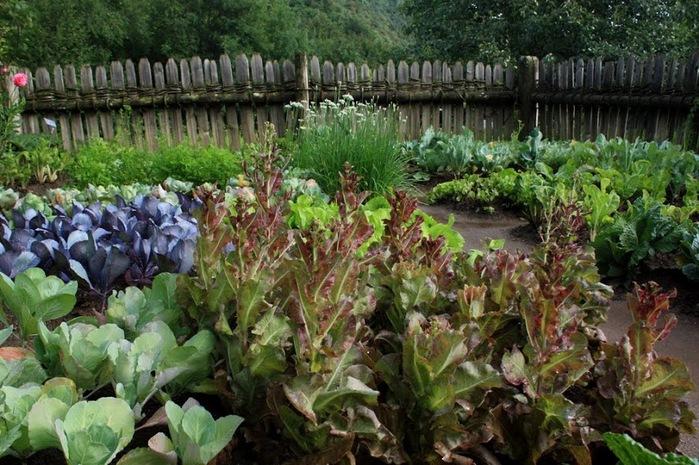 Сады замка Траутмансдорф 70745