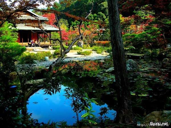 японские сады12 (600x450, 215Kb)