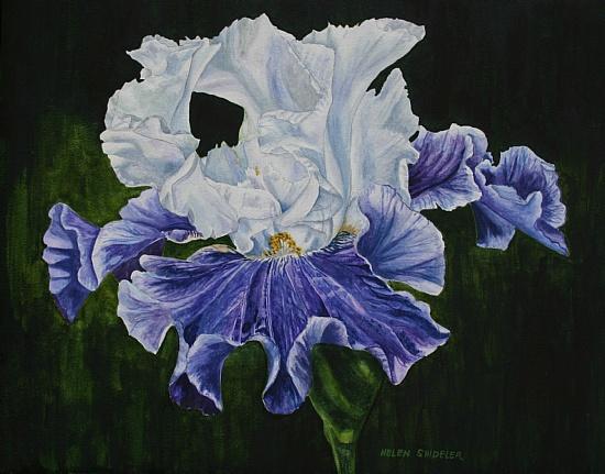 blue-tafeta (550x431, 99Kb)