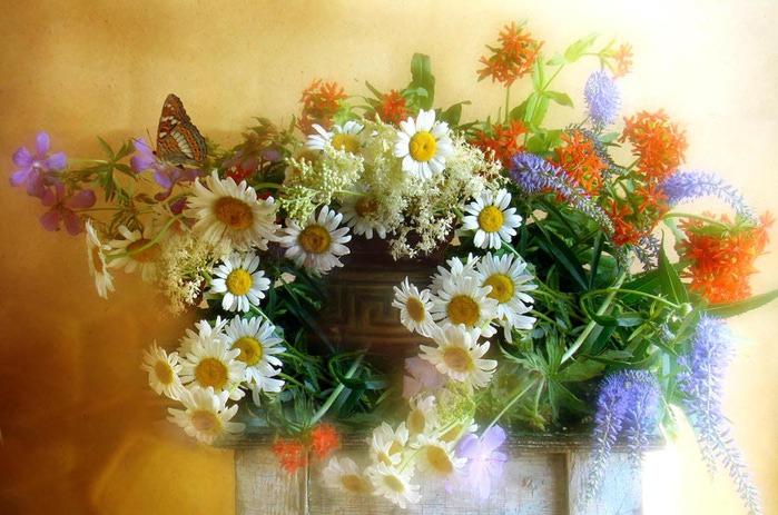 Вы что смеетесь цветы в солоухин