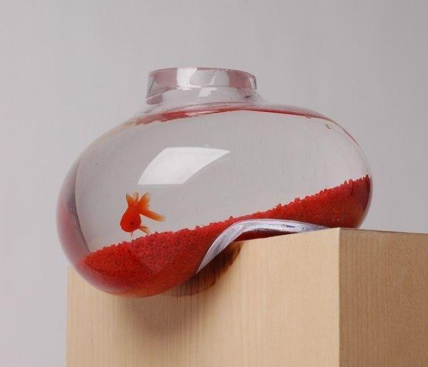 аквариум (599x514, 26Kb)