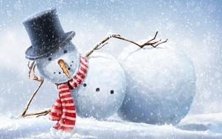 ))))Снеговик (320x200, 39Kb)