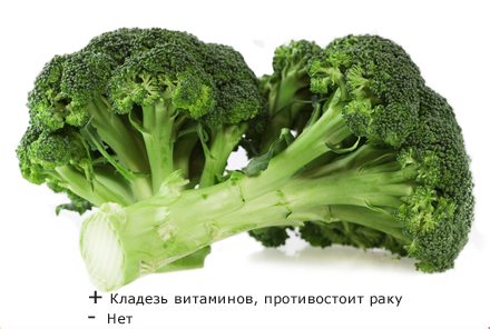 Broccolini  Wikipedia
