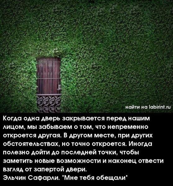 door (557x600, 149Kb)