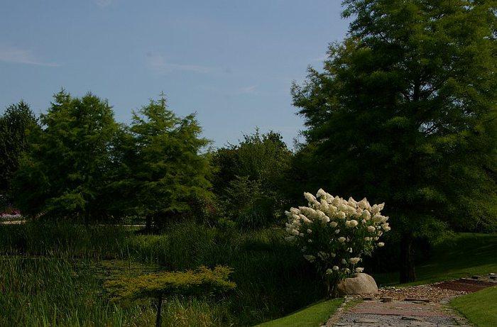 Бад Цвишенан : Park der Garten 25558