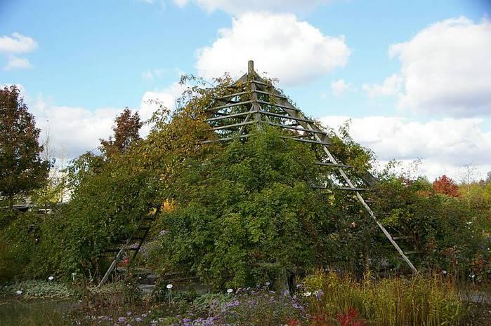 Бад Цвишенан : Park der Garten 96700