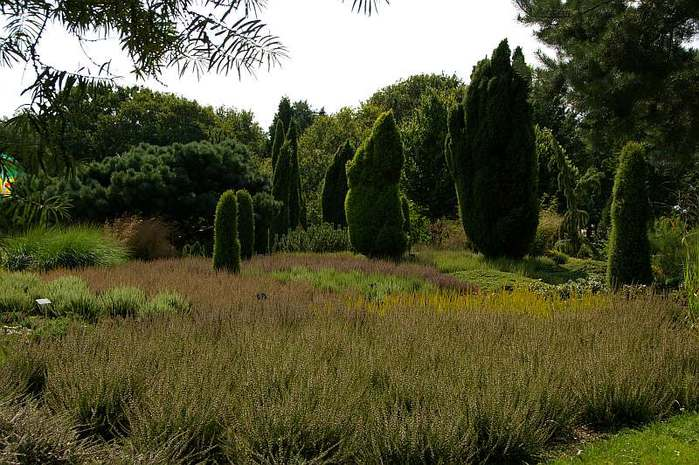 Бад Цвишенан : Park der Garten 92652