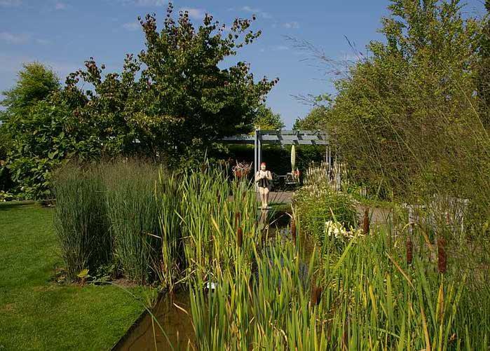 Бад Цвишенан : Park der Garten 34045