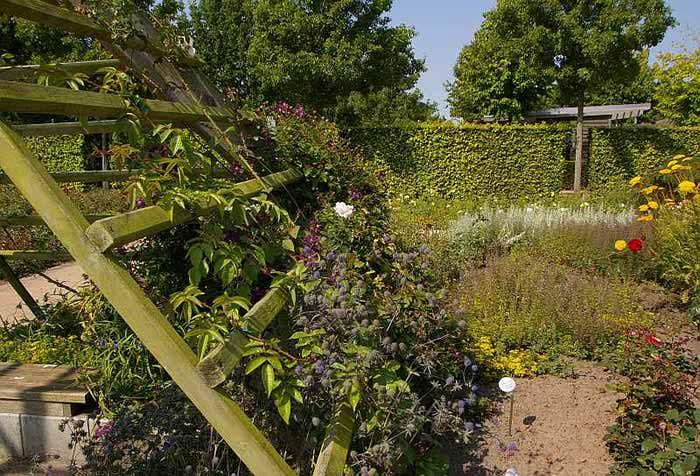 Бад Цвишенан : Park der Garten 14399