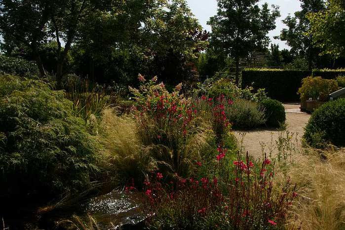 Бад Цвишенан : Park der Garten 10426