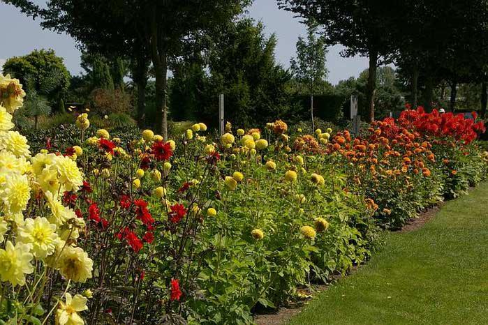 Бад Цвишенан : Park der Garten 89150