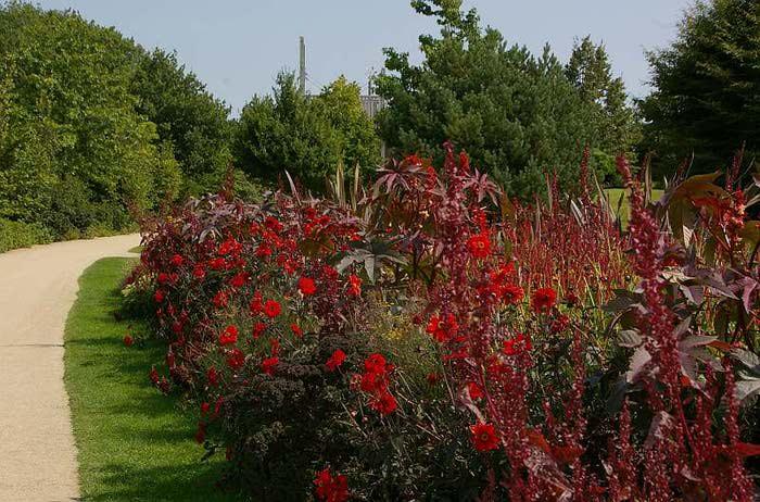 Бад Цвишенан : Park der Garten 31708