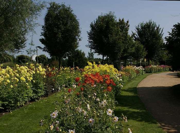 Бад Цвишенан : Park der Garten 25824