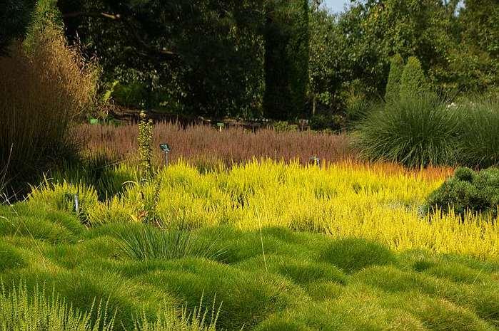 Бад Цвишенан : Park der Garten 71353