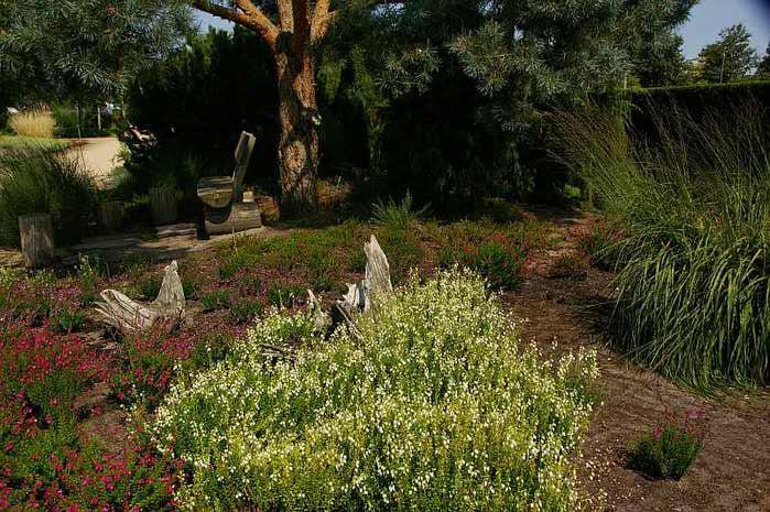 Бад Цвишенан : Park der Garten 20502