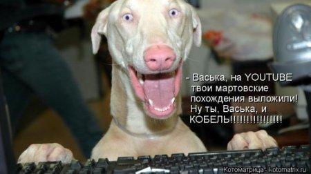 1356105174_kotomatrix_01 (450x252, 25Kb)
