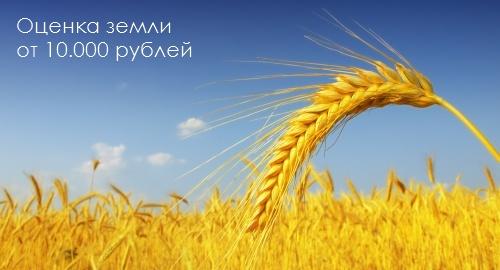 DB_Image_Land_Ocenka_Zemly_20121112_text (500x270, 50Kb)
