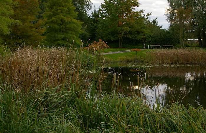 Бад Цвишенан : Park der Garten 97011