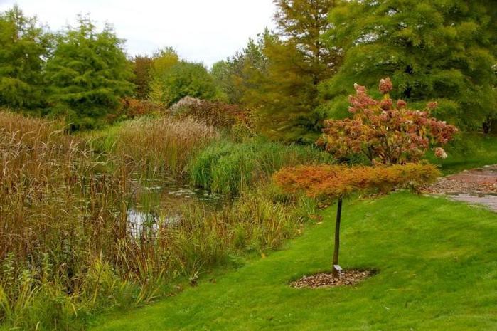 Бад Цвишенан : Park der Garten 91999