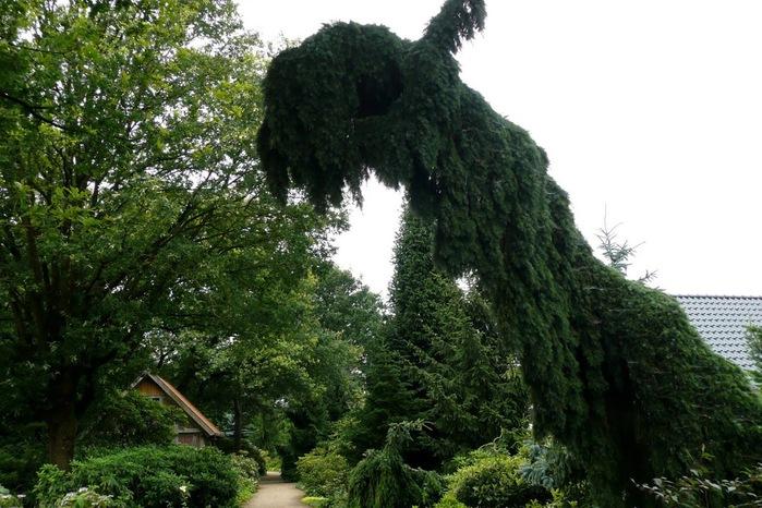 Бад Цвишенан : Park der Garten 99476
