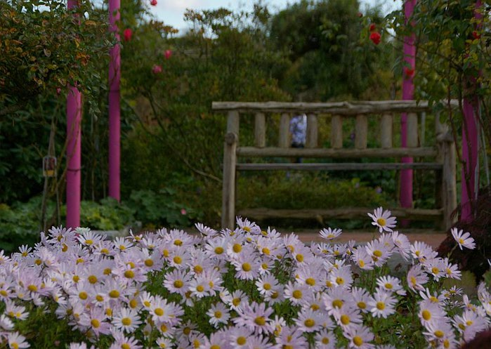 Бад Цвишенан : Park der Garten 58908