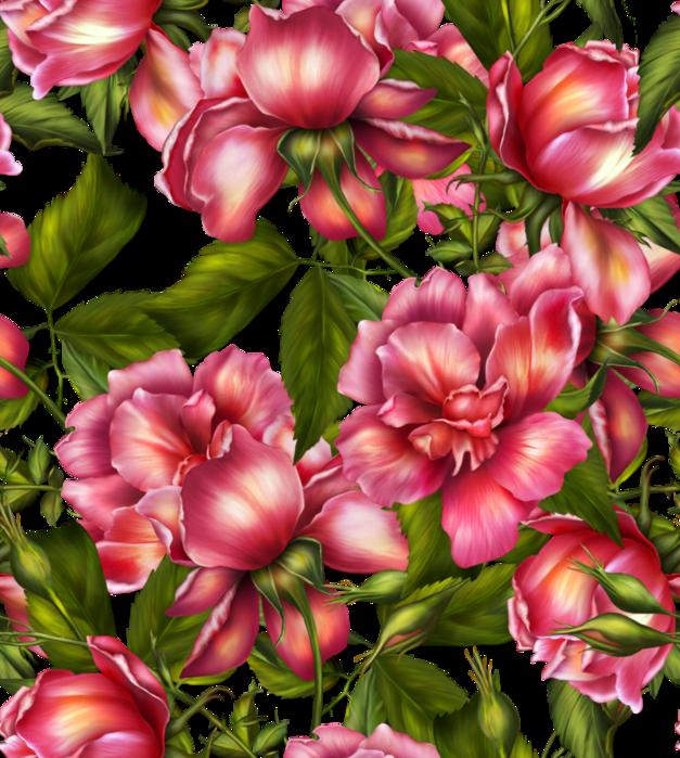 _rosepaper1a (627x700, 790Kb)