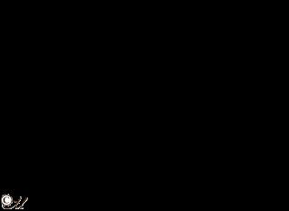 крылья счастья 01 (320x233, 16Kb)