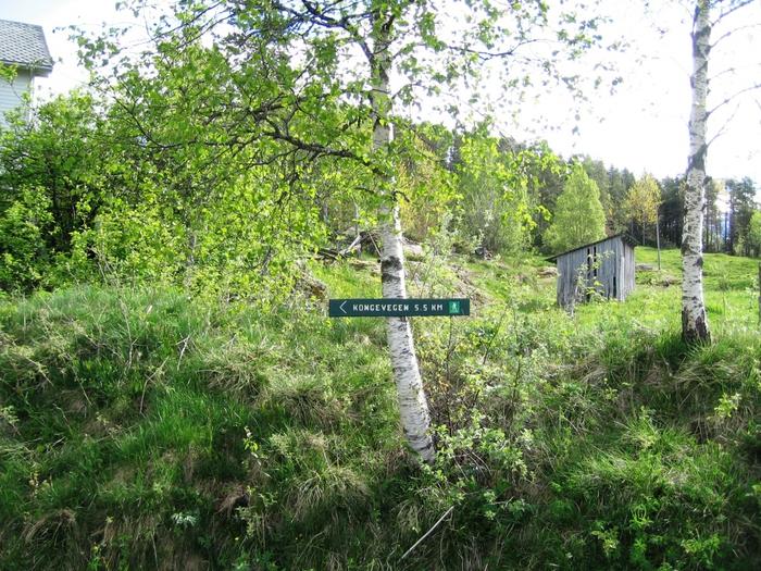 3649705_Pensjonistertur_til_Norge_2012_213 (700x525, 401Kb)