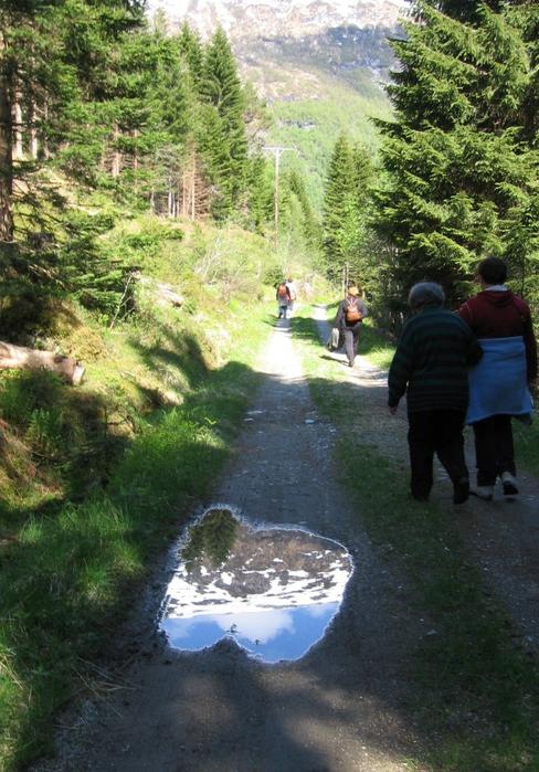 3649705_Pensjonistertur_til_Norge_2012_231 (488x700, 326Kb)