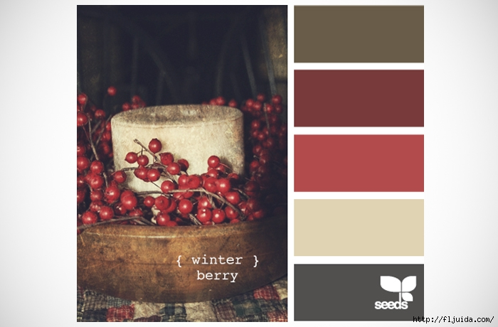 design-seeds-winter-berry-colour-palette-inspiration (1) (700x460, 146Kb)