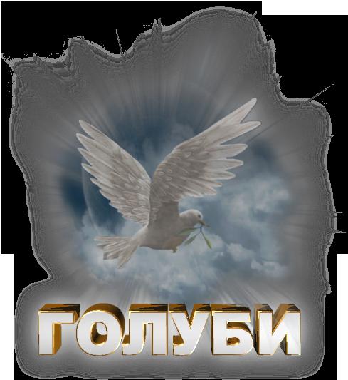 3996605_Golybi_na_prozrachnom_fone (489x533, 426Kb)