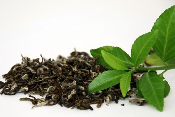 чай с травами (581x390, 48Kb)