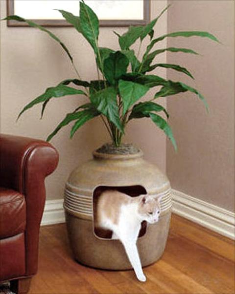 Креативные домики для кошек.