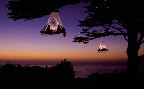 Кемпинг на деревьях, побережье Калифорнии (604x377, 18Kb)