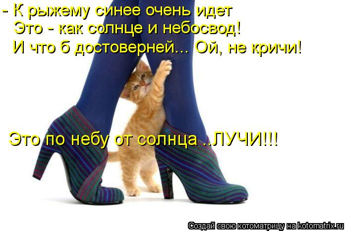 kotomatritsa_yF (700x467, 49Kb)