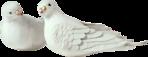 Превью Голуби (25) (148x57, 11Kb)